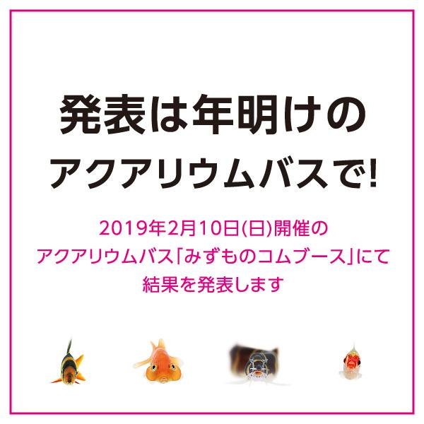 uozura_cp201906.jpg