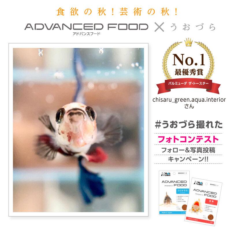 uozura_cp20201130a1.jpg