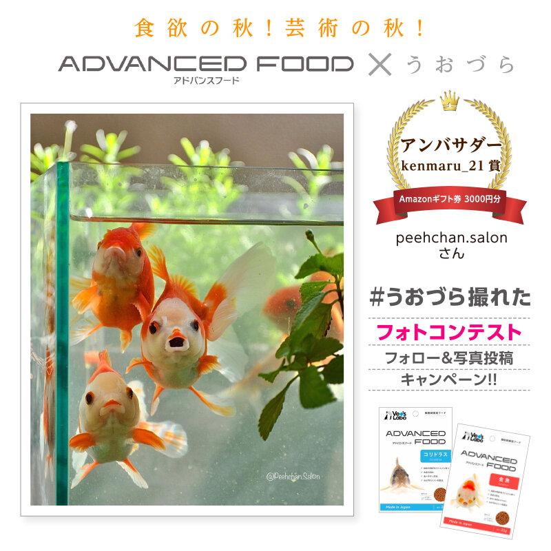 uozura_cp20201130a2.jpg