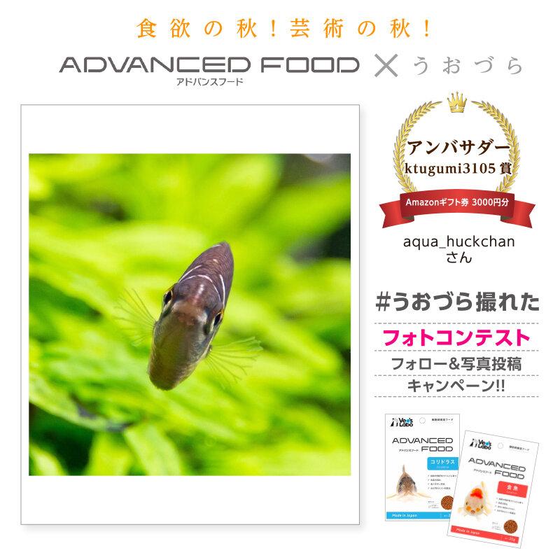 uozura_cp20201130a4.jpg