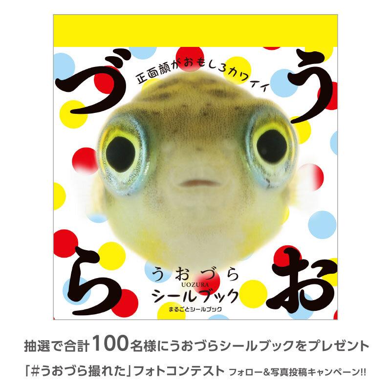 uozura_cp20210706c.jpg