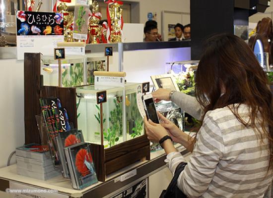 2016年 第34回 日本観賞魚フェア