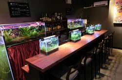 近藤熱帯魚店